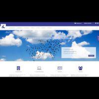 Abbildung der CAPCAD SYSTEMS AG Homepage